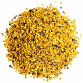 image of bee pollen on a white background poster