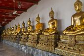 Wat Pho . Temple of the Reclining Buddha. The courtyard. Gilded Buddha statues. Bangkok. Thailand. Famous tourist destination, tourist attraction. poster