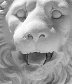 Headshot of a medieval lion statue in the medieval town of Rhodes. poster