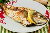 bream baked with lemon in a dish poster