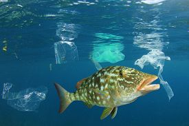 Plastic ocean. Fish among plastic bags polluting the sea. Microplastics contaminate seafood