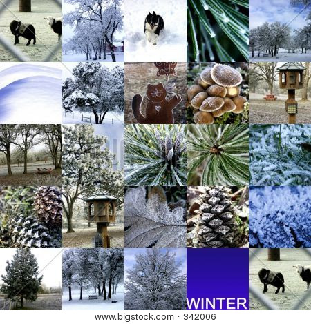 Winter Photo Collection Collage
