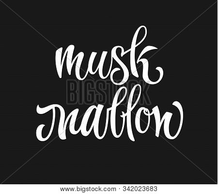 Vector Hand Drawn Calligraphy Style Lettering Word - Musk Mallow. White Colored Isolated Design. Iso