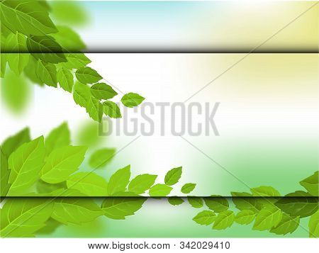 Green Leaves. Green Leaf Ecology Nature. Summer Vector Illustration. Colorful Leaves In Beautiful St