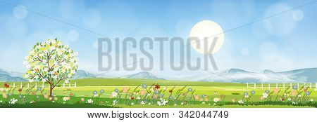 Summer Mountain Landscape With Blue Sky And Clouds, Panorama Green Fields, Fresh And Peaceful Rural