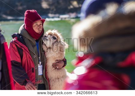 Alpaca With Owner At Blue Moon Valley, Landmark And Popular Tourist Attraction Inside The Jade Drago