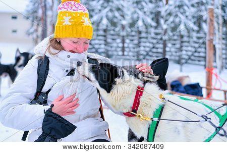 Girl With Husky Dog In Finnish Lapland Winter Finnish Forest Reflex