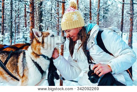 Girl And Husky Dog In Sled In Finland In Lapland Reflex