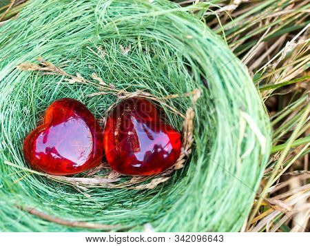 Bird Nest Hidden In A Grass With Two Red Hearts Inside. Concept Of Family, Cozy, Loving, Protection,