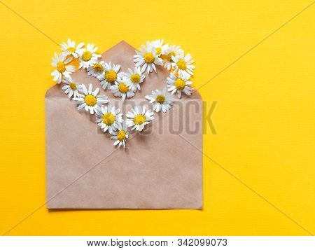 Envelope With Chamomile Flower Heart Shape. Medicinal Chamomile Tea On A Bright Yellow Paper Backgro