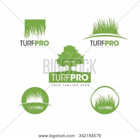 Turf Lawn And Garden Care Company Creative Design Element. Vector Grass And Tree Icon Set For Landsc