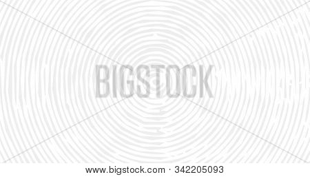 Conceptual 4k Background With Tree Rings. Lumber Surface, Wood Texture. Stock Vector Illustration Is