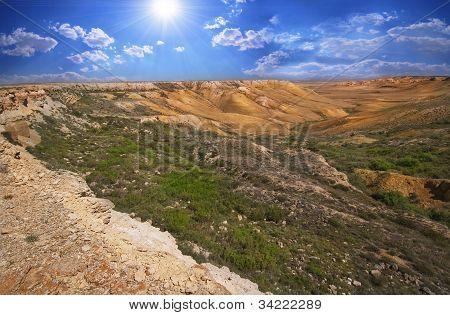 Canyon On The Of Ustyurt