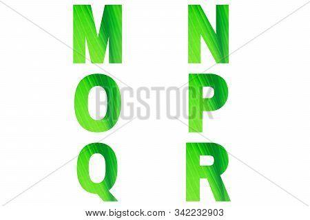 Green Font Alphabet M, N, O, P, Q, R Made Of Natural Bananas Leaf Background.