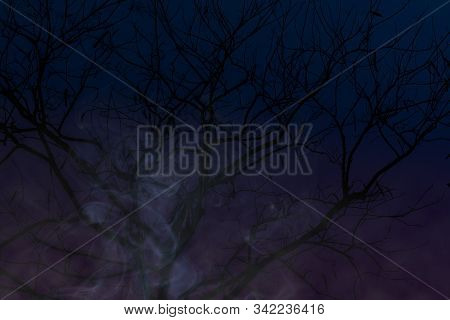 Creepy Dark Background With Dead Tree And Mysterious White Smoke.