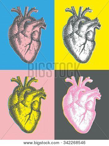 Hand Drawn Line Art Anatomic Human Heart