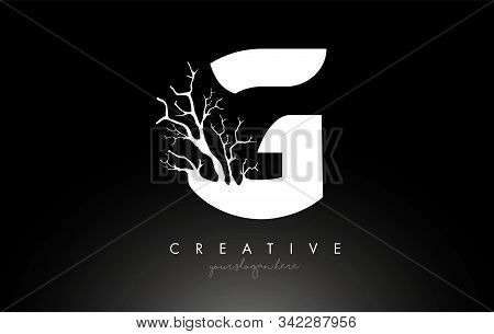 Letter G Design Logo With Creative Tree Branch. G Letter Tree Icon Logo  Vector Illustration.
