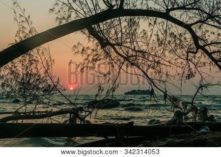 A Tree Silhouette At Sunrise On Koh Rong Island