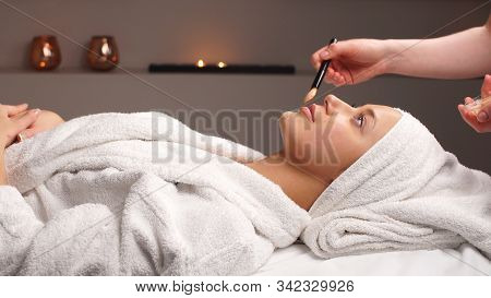 Professional Beautician Applying Cosmetic Mask On Female Face In Beauty Salon. Cosmetician Is Having
