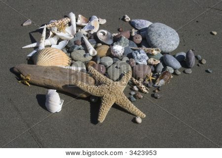 Beach Related Items In The Sand