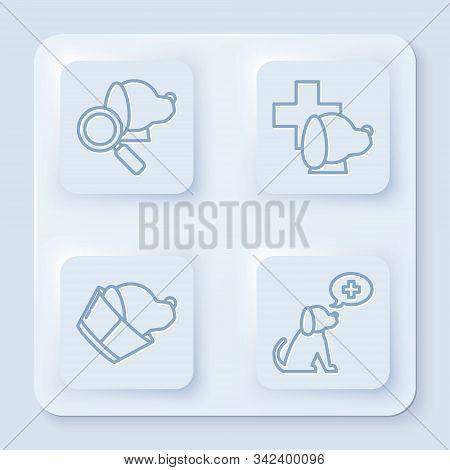 Set Line Veterinary Clinic Symbol, Veterinary Clinic Symbol, Veterinary Clinic Symbol And Veterinary