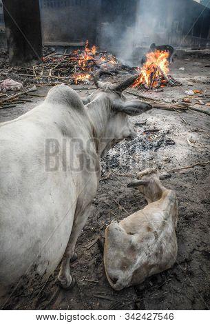Funeral Pyres Burning At Swargadwar Crematorium,puri,odisha State,india.