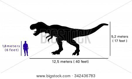 Comparison Size Between Tyrannosaurus Rex And Human.