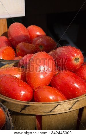 Raindrops Glisten On Baskets Of Red Plum Tomatoes Giving Them A Freshly Washed Appeal.