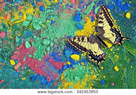 Bright Multicolored Butterfly On A Colorful Pastel Background. Color Concept. Multicolored Crayons T