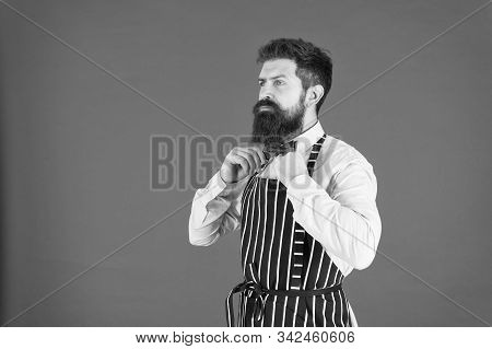 Tie Fits Perfect. Elegant Banquet Cuisine. Confident Bartender. Male Cooking. Bearded Man Chef. Brut
