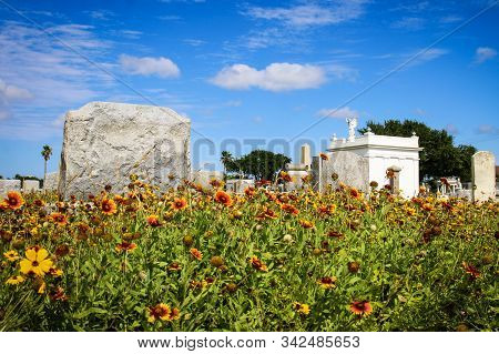 Headstone In Cemetery With Flowers And Blue Sky