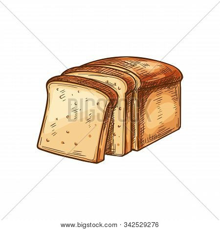 White Bread Toasts Sketch Icon. Vector Bakery Wheat Bread Square Slices