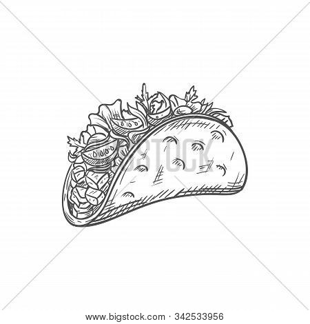 Tacos Or Burritos Isolated Mexican Food Sketch. Vector Fastfood Snack, Fried Tortilla With Lettuce,