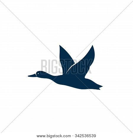 Flying Wild Duck Isolated Silhouette. Vector Bird In Flight, Geese Feathered Animal