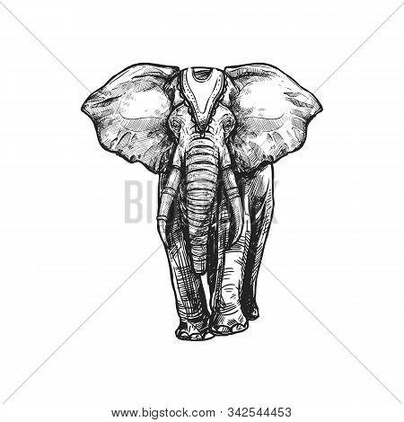 Buddhism Religious Symbol, White Elephant. Buddhist Worship And Hinduism Dharma Religion Vector Sket
