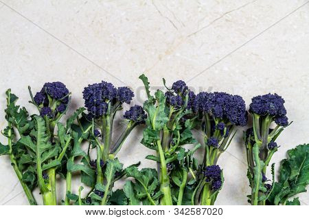 Florets Of Purple Sprouting Broccoli With Copyspace Above On Marble Texture, Background, Landscape.