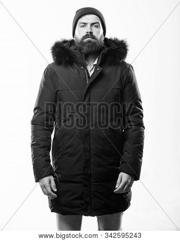 Man Bearded Stand Warm Jacket Parka Isolated On White Background. How To Choose Best Winter Jacket.