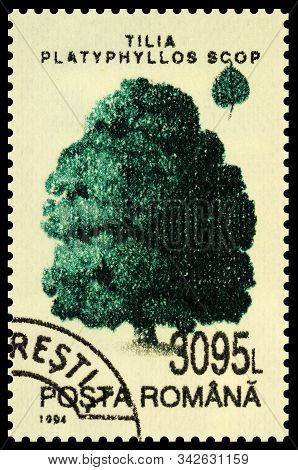 Moscow, Russia - December 31, 2019: Stamp Printed In Romania Shows Large-leaved Lime Or Large-leaved