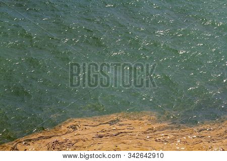 Brown Sludge In Water From Spawning Coral, Contrasting Against The Green Of The Sea. Great Barrier R