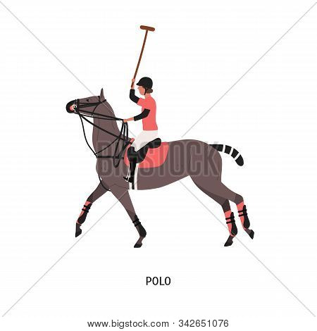 Horse Polo Flat Vector Illustration. Game, Performance, Equestrian Sport Competition. Polo Player Ri