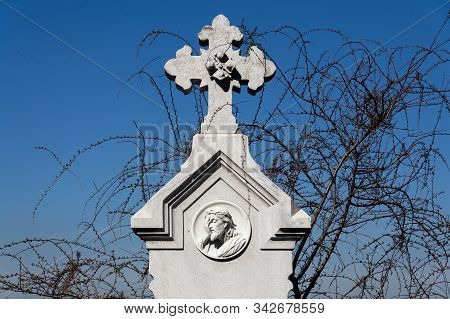 Beautiful Jesus Christ Head On Tombstone With Runners From Tree In Background, Cemetery On A Sunny D