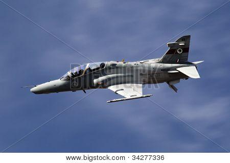 Aussie Hawk Cruising