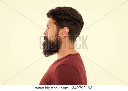 Making His Beard Perfect. Mature Bearded Man Profile. Hipster With Moustache And Beard. Hipster Afte