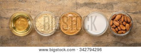 collection of almond super foods: nuts, flour, oils and butter - top view of small glass bowls over textured bark paper, panoramic banner