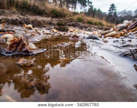 Low Level View Of Water In Gully With Stones . Swinley Forest Bracknell.