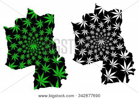 Hajjah Governorate (governorates Of Yemen, Republic Of Yemen) Map Is Designed Cannabis Leaf Green An