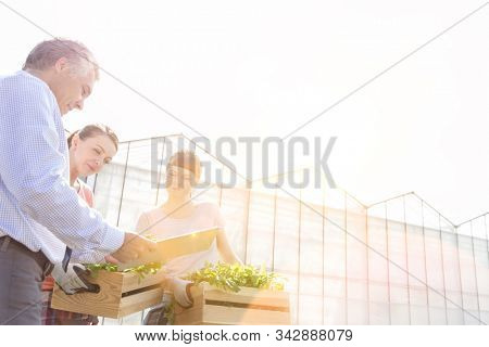 Mature male biochemist discussing with female coworkers against greenhouse