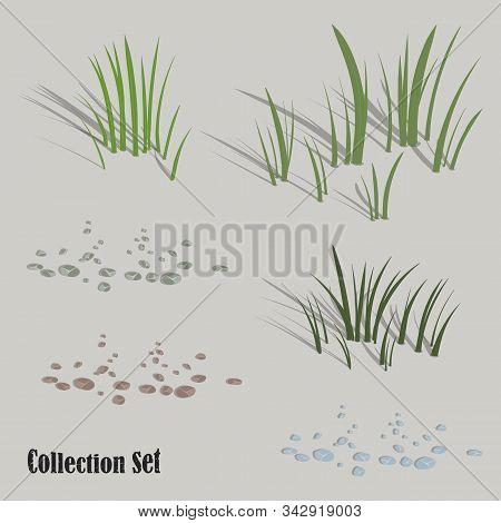Forest Vegetation. Grass, Stones. Set Of Vector Images For Design. Vector Illustration.