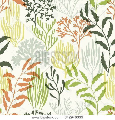 Ocean Corals Seamless Pattern. Kelp Laminaria Seaweed Algae Background. Mediterranean Staghorn And P