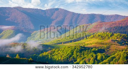 Mountainous Countryside In The Morning. Valley Full Of Rising Fog. Green Foliage On Trees. Wonderful